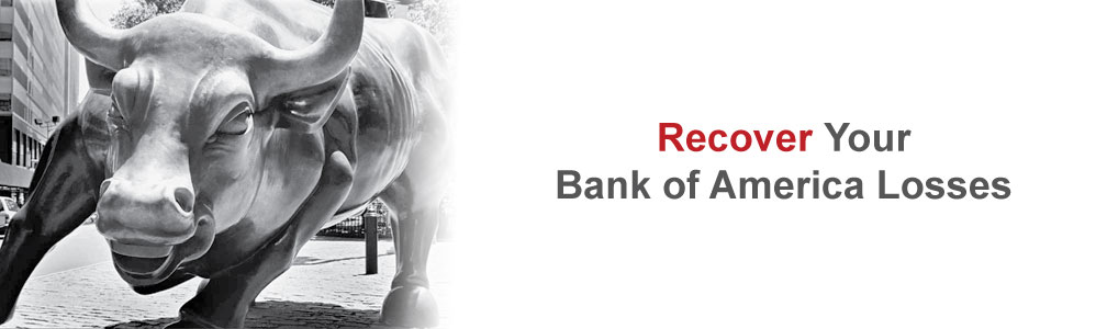 Recover Your Bank of America Losses